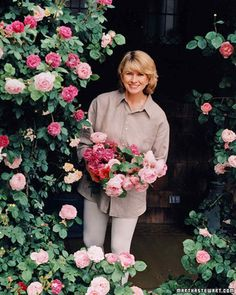 The Secrets of Martha's Rose Garden   Martha Stewart