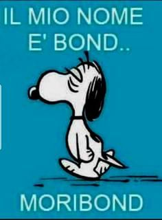 my name and bond – Humor Funny Phrases, Funny Quotes, Funny Images, Funny Pictures, Bond, Italian Humor, Snoopy Quotes, Peanuts Quotes, Medical Humor