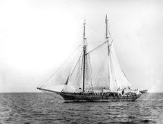 WH-D 00154 - Whaling Vessel John R. Manta | ________________… | Flickr