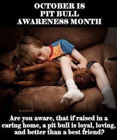 Are u aware, that if raised in a caring home, a pit bull is loyal, loving and better than a best friend? Well, it's true. ☺