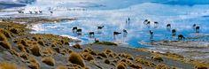 Herve Sentucq Photo panoramique : Voyage