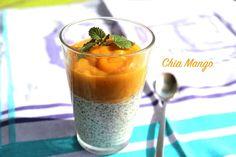 Chia Pudding mit Kokosmilch und Mangopüree - Raw Vegan - Milchfrei - Laktosefrei - hoher Omega 3 Anteil - gesund und lecker