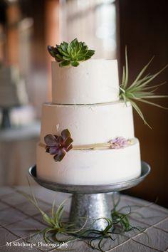 wedding cake w succulents