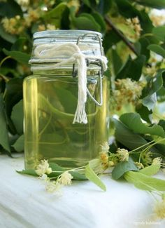 Syrop z lipy Home Remedies, Natural Remedies, Polish Recipes, My Favorite Food, Preserves, Health And Beauty, Smoothies, Herbalism, Mason Jars