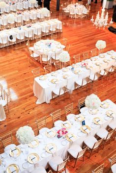 Raleigh Event Planner Childrens Birthday Parties Childrens