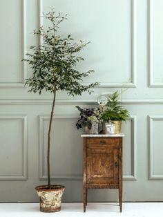 L'épure non minimaliste, ou comment sublimer un pan de mur relativement classique