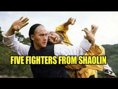 Wu Tang Collection: Five Fighters From Shaolin