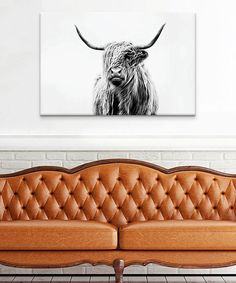 This Portrait of a Highland Cow Wrapped Canvas is perfect! #zulilyfinds @bekahroo91 ... its trending!