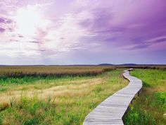 Plum Island, MA, boardwalk
