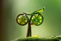 Hey, that's my bike.