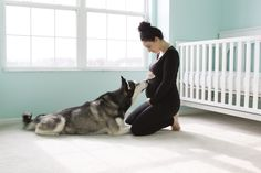 Maternity photos with dog. Kellie and Kenai!