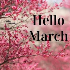 Spring Months, Days And Months, Months In A Year, Hello September Images, Hello March, Next Wallpaper, Cute Wallpaper Backgrounds, New Month Wishes, New Month Quotes