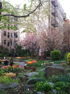 The West Side Community Garden, Upper West Side, New York.