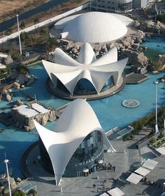 Oceanografico, Valencia, Spain amazing place the architecture is just stunning…