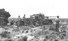 88` Flak L71 41 Africa Corps