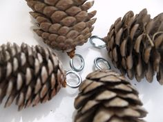 Hold the pine cone by the eye hook and dip it into the melted beeswax, quickly. Description from themagiconions.com. I searched for this on bing.com/images