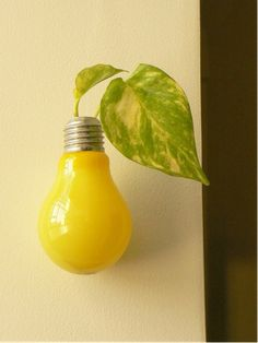 recycled light bulb vase - paint inside of bulb, affix to wall, add pothos plant...