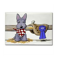 KiniArt Western Scottie Dog Rectangle Magnet.    © KiniArt - Kim Niles. All Rights Reserved