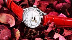 Fashion and Elegant Steel Watch For Ladies Go Red, Red Fashion, Watch Brands, Fashion Watches, Omega Watch, Wrist Watches, Lady, Angel, Elegant