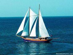 Peace on the Sea