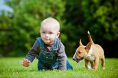 Hunde und Baby – was ist zu beachten?