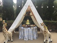 Safari theme baby shower for past clients. Built a glamping tent with antler chandeliers for all the desserts