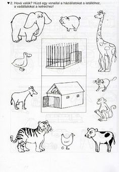 Számolj te is - Kollár Orsi - Picasa Web Albums Animal Crafts For Kids, Animals For Kids, Farm Animals, Animals And Pets, Animal Coloring Pages, Coloring Books, Educational Activities, Activities For Kids, Animal Worksheets