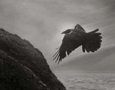 Odin's Cove photo by Beth Moon