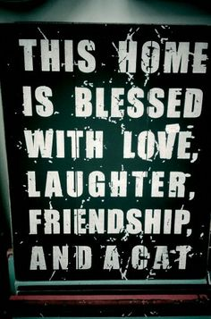 Love this sign!  #cat #quotes #cats =^..^= www.zazzle.com/kittyprettygifts