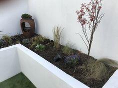 Bathtub, How To Plan, Plants, Standing Bath, Bath Tub, Flora, Bathtubs, Plant, Planting