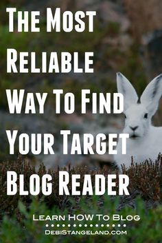 Finding your niche comes when you figure out who your target blog reader is. Find out and watch your audience grow.  ★ Learn HOW To Blog ★