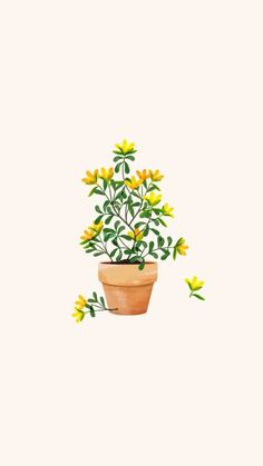 Ideas For Wallpaper Yellow Flowers Colour Wallpaper Flower, Plant Wallpaper, Trendy Wallpaper, Aesthetic Iphone Wallpaper, Screen Wallpaper, Aesthetic Wallpapers, Cute Wallpapers, Iphone Wallpapers, Interesting Wallpapers