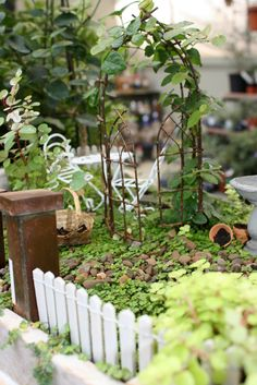 ideas for fairy gardens | Here are some fairy gardens and miniature landscapes created by our ...