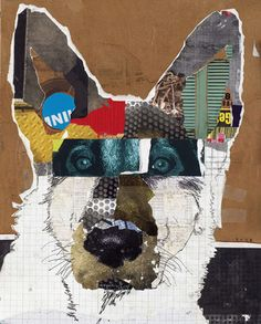M. Keck dog portrait