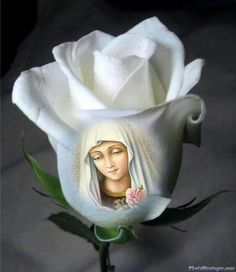 Heavenly Mother Mary, what a beautiful Rose that You are! Pictures Of Jesus Christ, Religious Pictures, Religious Art, Blessed Mother Mary, Blessed Virgin Mary, Miséricorde Divine, Jesus Photo, Jesus Christus, Jesus Art