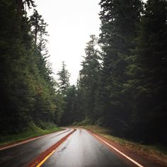 Sometimes it's in the journey. #pnwadventures #olympicpeninsula #washington