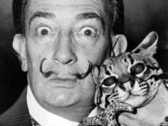 For Salvador Dalí's birthday, here's a photo of him with his cat. And yes, his cat is an ocelot Artist Salvador Dali and his ocelot, Babou. Salvador Dali, Ocelot, Famous Artists, Great Artists, Henri Cartier, Son Chat, Matou, Cat People, Pablo Picasso
