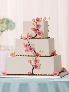 cake shape