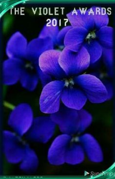 Fantastic Absolutely Free Violet flores Thoughts Making use of their incredibly formed unclear actually leaves, his or her sleek and stylish shape as Purple Flowers, Spring Flowers, Wild Flowers, Beautiful Flowers, Purple Art, Violet Tattoo, Month Flowers, Sweet Violets, Violets Flower