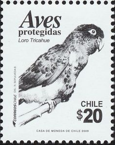 Burrowing Parrot stamps - mainly images - gallery format