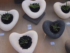 Hebel shapes & succulents