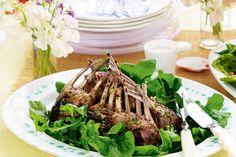 Lemon & oregano lamb racks @ http://tastyshare.com/posts/199347-lemon-oregano-lamb-racks