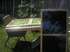 There are many types of DIY solar dehydrators you can make. You'll save money with a DIY dehydrator and find that its size gets the job done more quickly. Homestead Survival, Survival Prepping, Emergency Preparedness, Emergency Preparation, Survival Food, Diy Solar, Conservation, Solaire Diy, Food Dryer