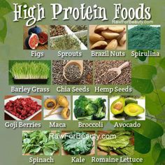 raw food protein