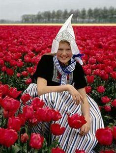 Holanda. Un país para descubrir. Campo de tulipanes. www.ofertravel.es  #ofertravel ©