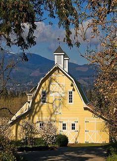 Yellow barn, blue sky.