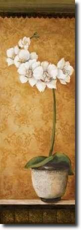 Cuadro Hanna's Orchids II - Osborne, Susan