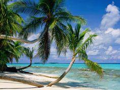 BANCO DE IMÁGENES: Playas paradisiacas parte XVIII (12 Paisajes en en Mar)