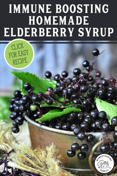 Making homemade elderberry syrup from fresh, frozen or dried elderberries is quick, easy and very affordable. Watch this easy step-by-step tutorial. Elderberry Gummies, Elderberry Recipes, Elderberry Syrup Recipe Canning, Elderberry Plant, Healthy Snacks, Healthy Eating, Healthy Recipes, Eating Raw, Canning Recipes