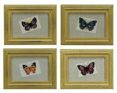 $19.50 {Vintage Charm} Tokio Butterflies in Distressed Frames, S/4 ~Enjoy one decor deal a day from WUSLU ~www.wuslu.com